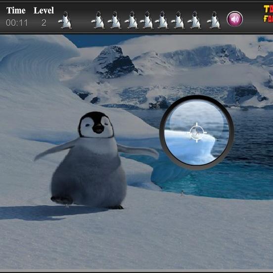 Делай ноги в поисках пингвинов